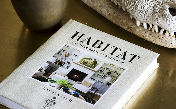 Cafe Design |Habitat- The Field Guide to Decorating