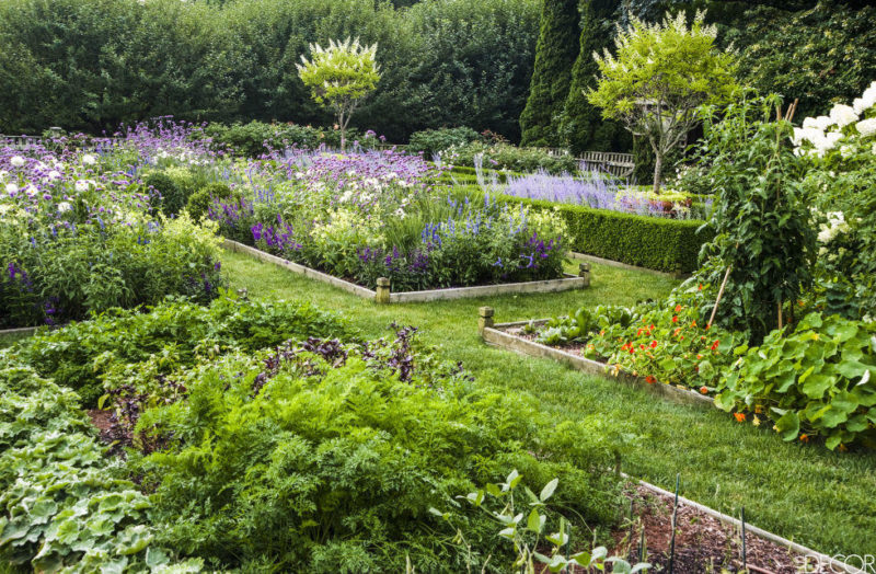 Heaven Is A Garden Ina Garten 39 S Garden