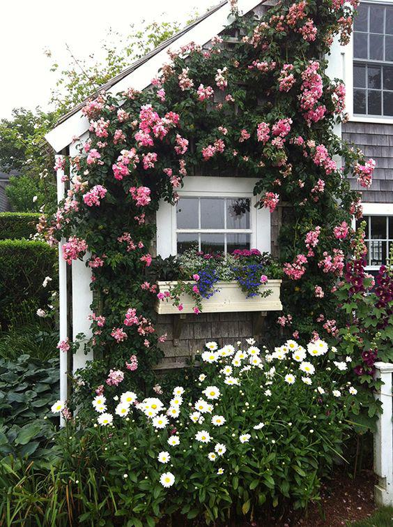 100 Window Better Homes And Gardens Better Homes