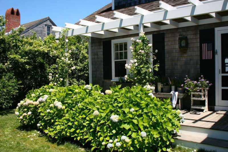 Cafe Design | Cottage by the Sea | Garden